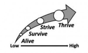 Thrive over Survive