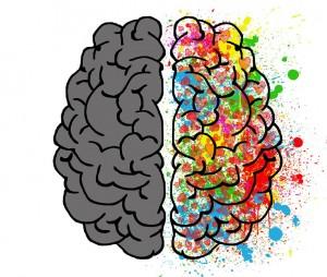 brain-2062049-960-720_orig